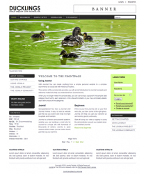 Pro joomla 2.5 template with slideshow: a4joomla-Ducklings