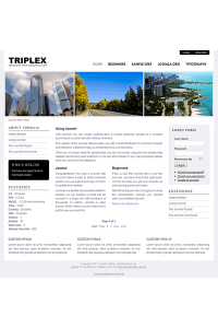 Pro joomla 2.5 template with slideshow: a4joomla-Triplex